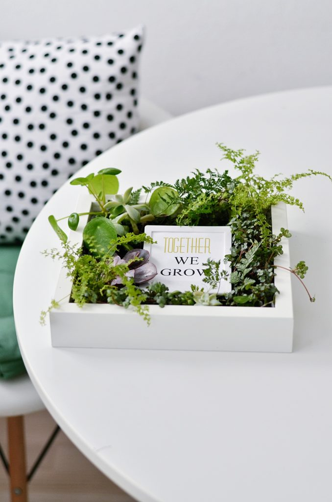 Ikea Hack: Bepflanzte Bilderrahmen selber machen