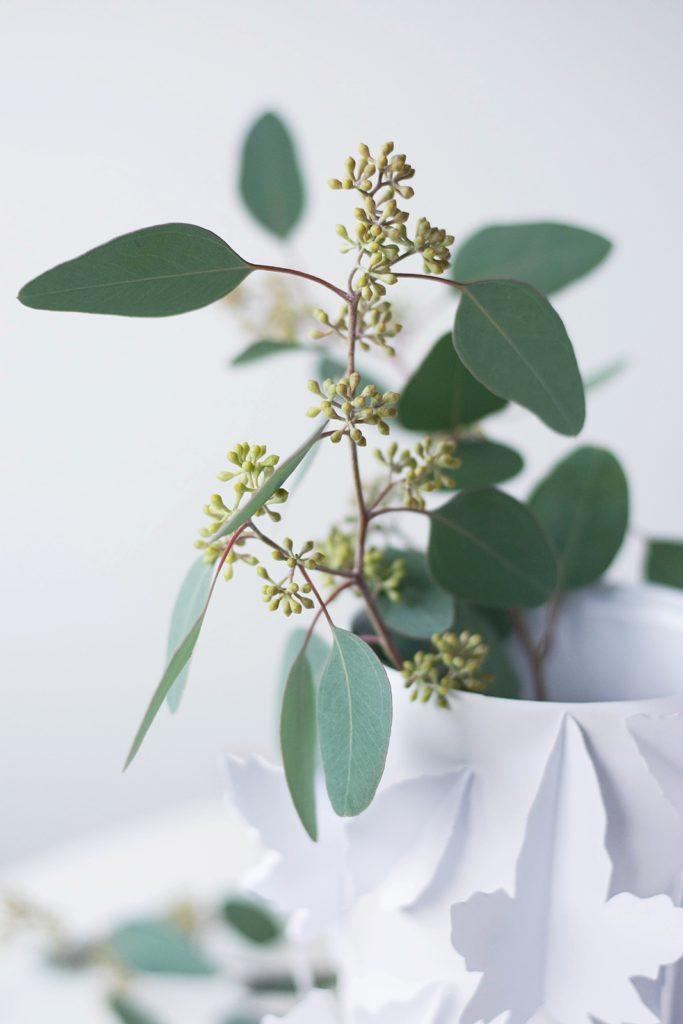DIY Vase + Eukalyptus