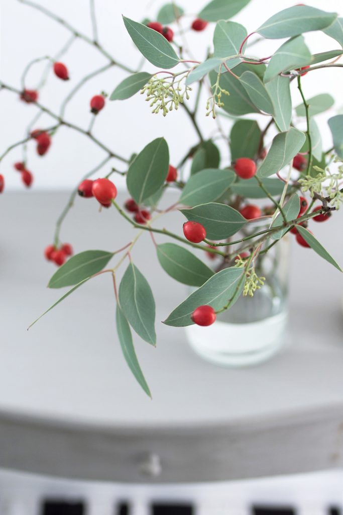 herbstdeko ganz schlicht mit hagebutten eukalyptus und wei en k rbissen sinnenrausch der. Black Bedroom Furniture Sets. Home Design Ideas