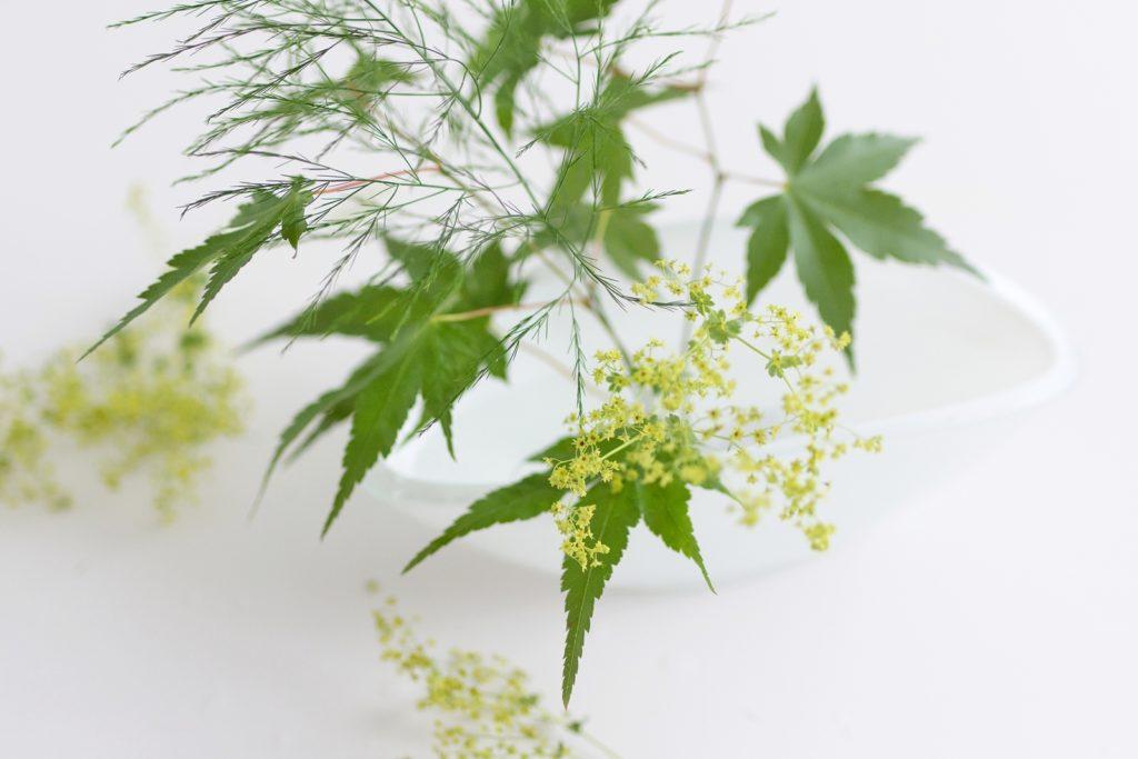DIY Ikebana mit Schnittblumen von HOFER