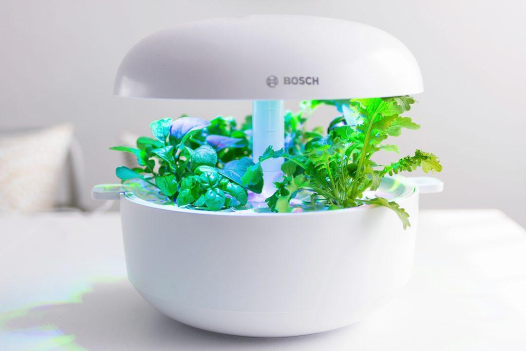 SmartGrow - Mein intelligenter Kräutergarten für die Küche