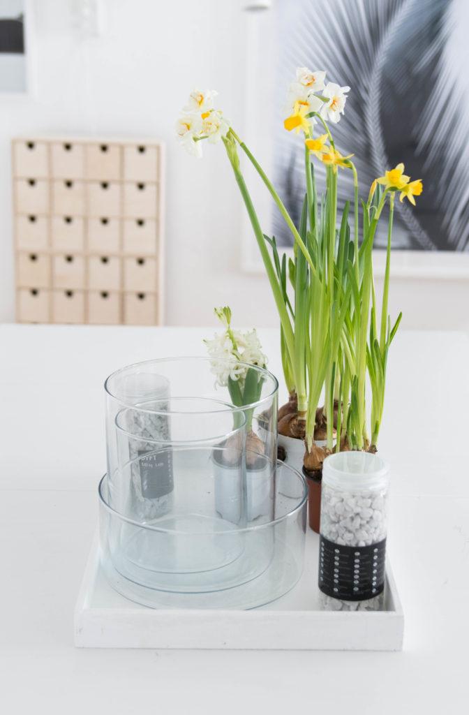 Die schnelle Deko-Idee: Einfaches Frühlings-Arrangement im Glas