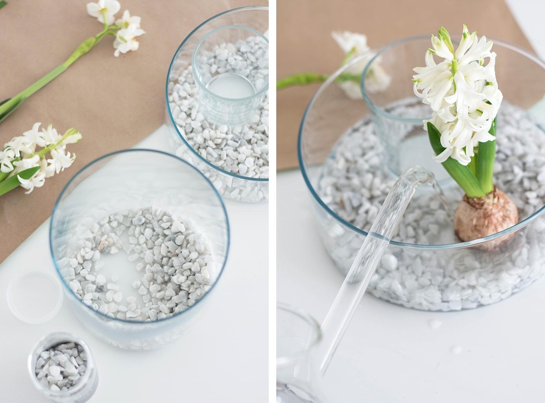 DIY Frühlingsdeko Hyazinthen im Glas