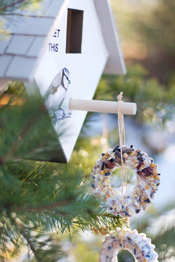 Werbung | DIY: So baust du ein tolles Vogelfutterhaus für den Garten selbst #hoferat #dabinichmirsicher #meinhofer