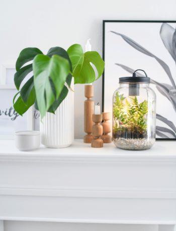 Leuchte mit echten Pflanzen dekorieren