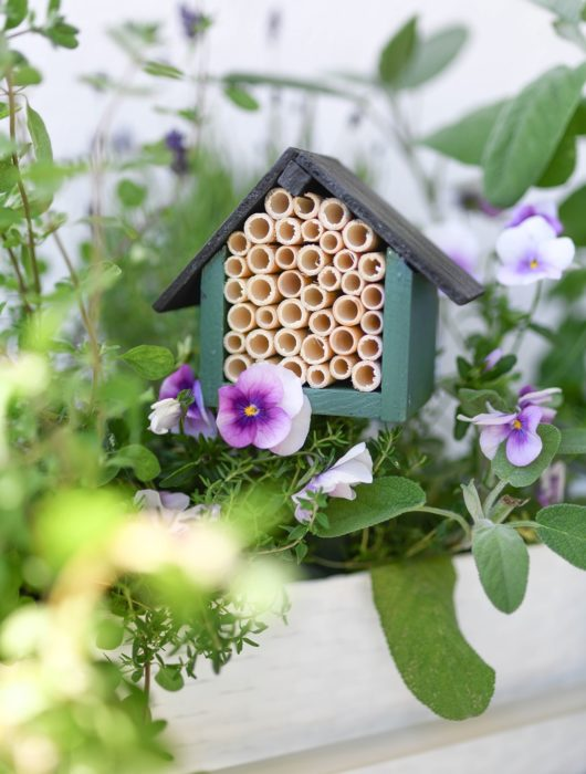 Bienenhotel selber bauen