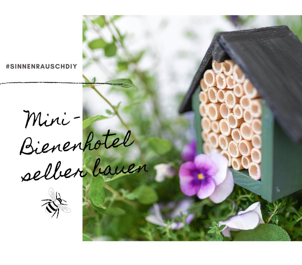 Immer schön hereingeflogen: Ein Mini Bienenhotel für Balkon und Terrasse selber bauen