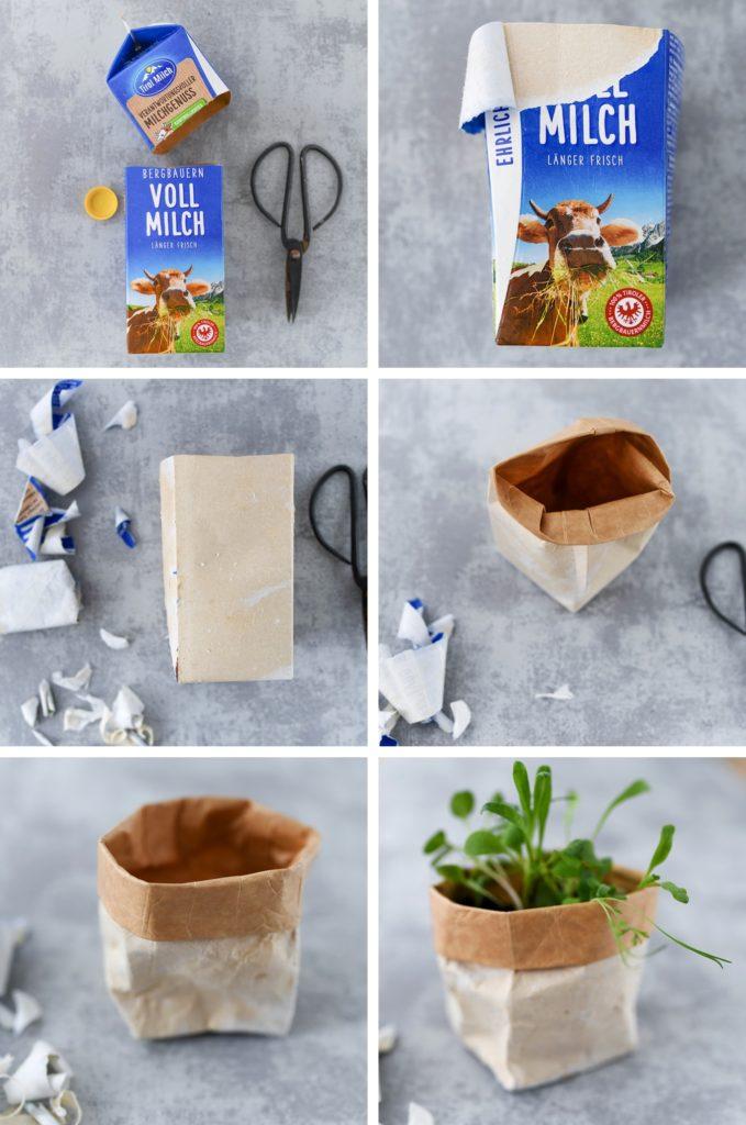 DIY: leere Milchpackungen zu kleinen Blumentöpfen upcyclen
