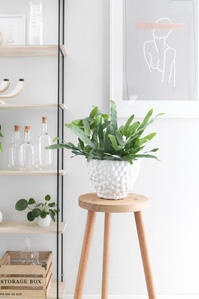 """DIY-Deko mit Rundungen: Trend-Vase """"Dotty"""" selber machen"""