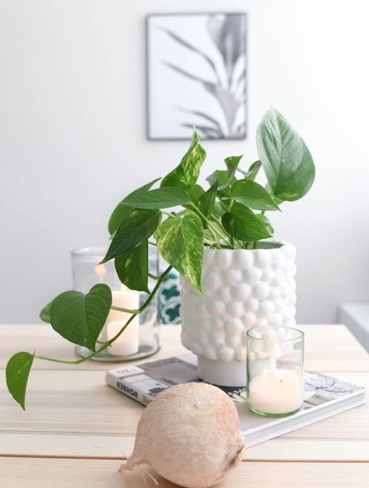 DIY Vase Dotty