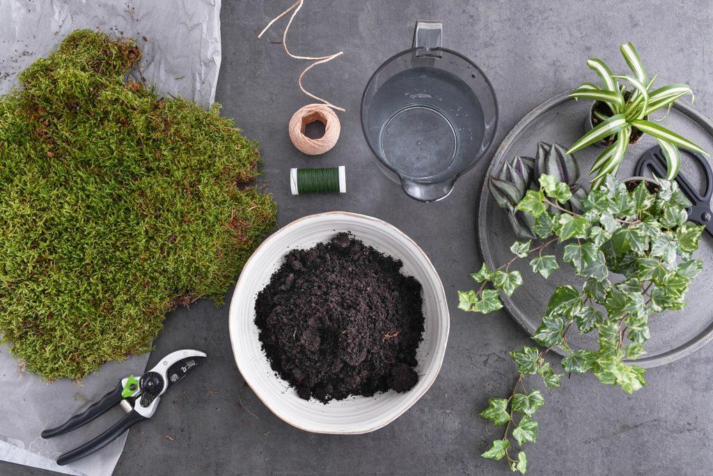 DIY | Lass deine Pflanzen schweben - Kokedamas einfach selber machen