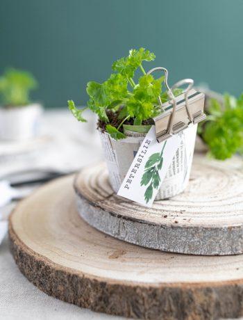 DIY Anzuchttöpfe aus Zeitungspapier