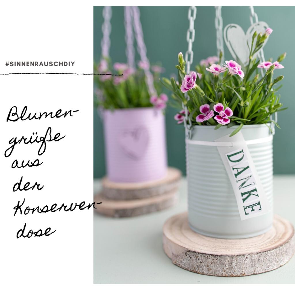 Upcycling-Idee zum Muttertag: Bepflanzte Blumenampel mit Pink Kisses aus Konservendosen selber machen