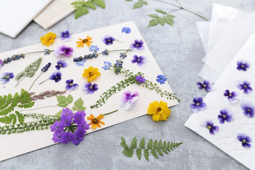 Nie wieder Eselsohren: Florale DIY Lesezeichen mit echten Blumen selber machen